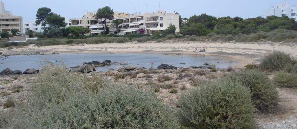 Fotografía de Colònia de Sant Jordi: La playa de Colonia Sant Jordi