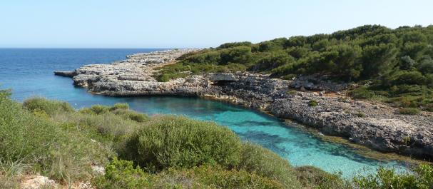 Fotografía de Mallorca Insel: Isla de Mallorca