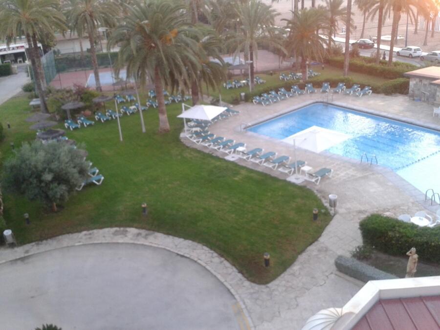 Comentarios gran hotel delfin benidorm seite 4 for Piscina delfin madrid