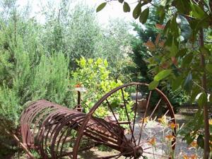 "Foto generica ""Azienda Agrituristica Le Betulle"""