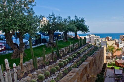 Foto del exterior de Hotel Alba Seleqtta
