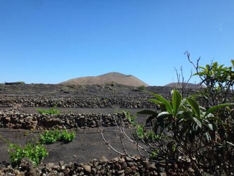 Foto del entorno de La Cabaña