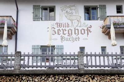 Bild - Wildberghof