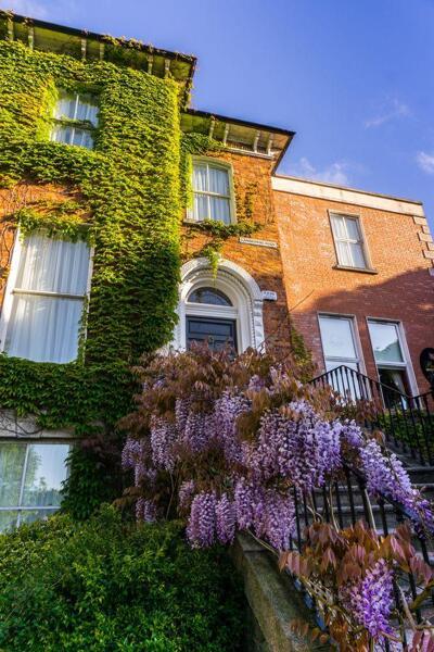 Foto degli esterni Butlers Townhouse