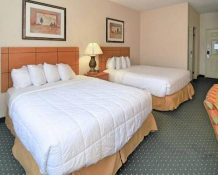 Zimmer - Quality Inn & Suites Springfield