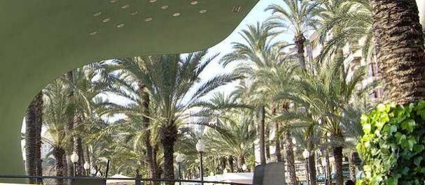 Fotografía de Comunidad Valenciana: Esplanada de Alicante