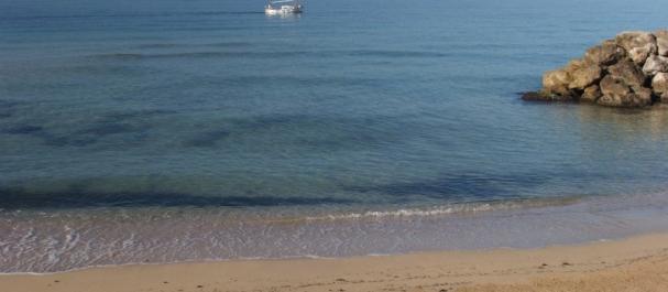 Fotografía de El Arenal: La playa de El Arenal