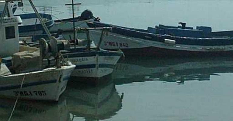 Foto Estepona: El puerto