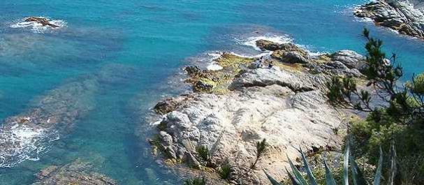Fotografía de L'Estartit: Mar Meditérraneo