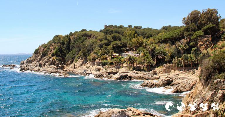 Picture : Lloret de Mar