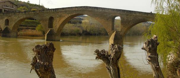 Fotografía de Puente la Reina: Puente la Reina