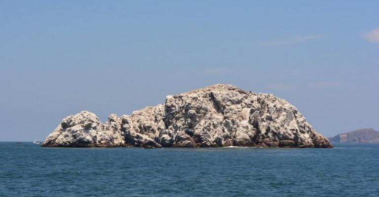 Foto von Sinaloa: Mar Mazatlan