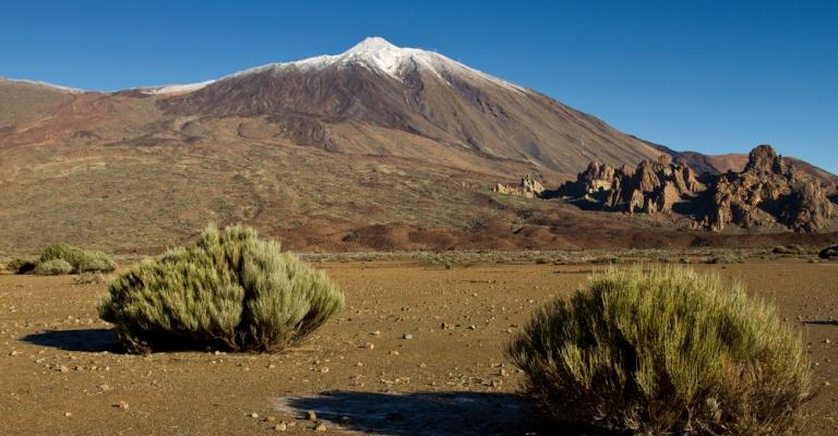 Picture Canary Islands: Tenerife