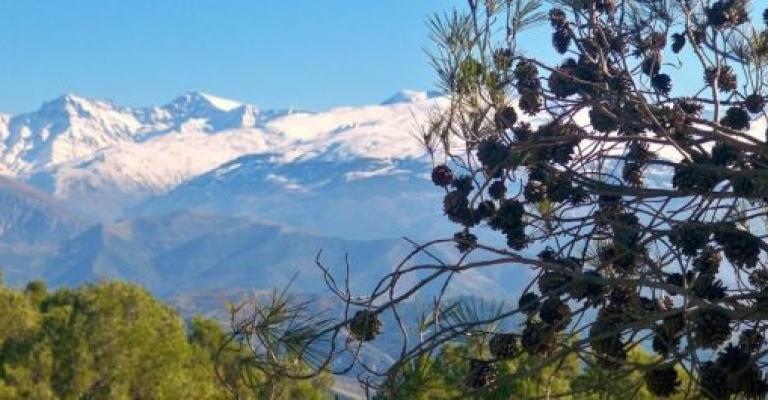 Foto : Parque Nacional de Sierra Nevada